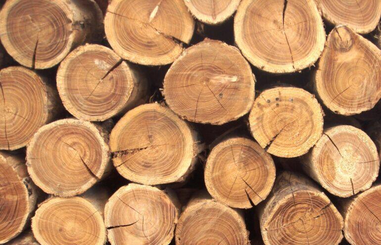 Уход за мебелью из дерева